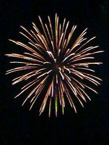220px-spider-firework-omiya-japan